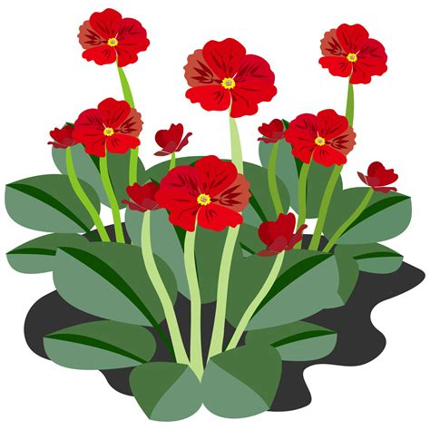 clipart pictures clipart flower