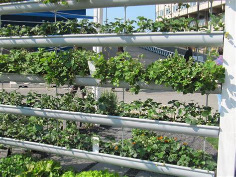 orti e giardini orti e giardini verticali garden it