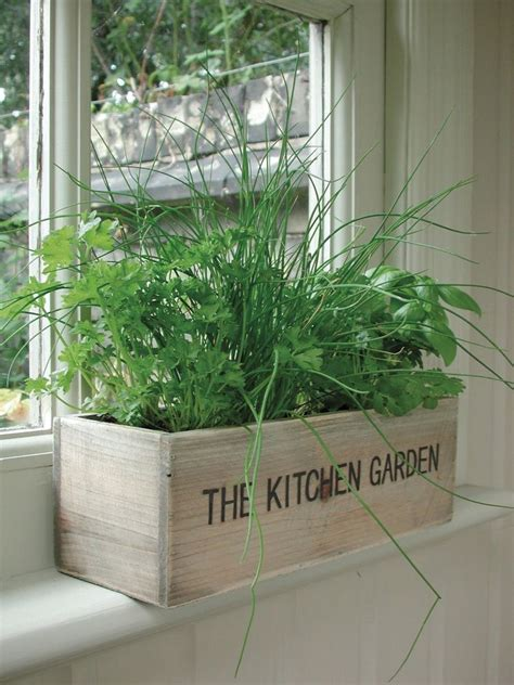 indoor window planter unwins herb kitchen garden kit grow your own wooden pots
