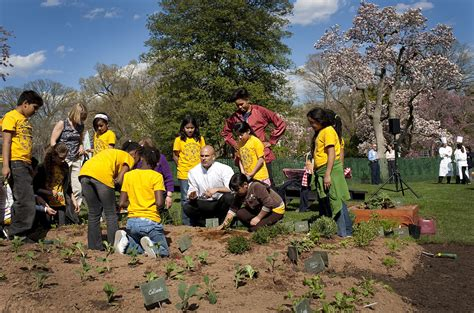 white house vegetable garden wikipedia