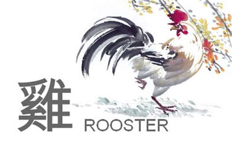 new year 2018 rooster horoscope zodiac rooster pictures pics images and photos