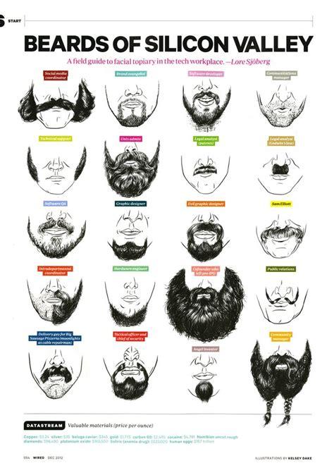 beard pattern types beard of silicon valley kelsey dake tech pinterest