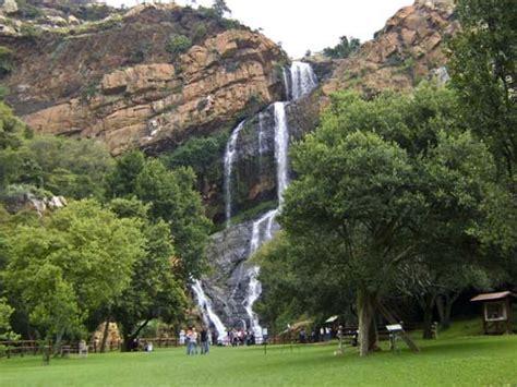 Walter Sisulu National Botanical Gardens Ogr 243 D Botaniczny W Johannesburgu Mienia Waltera Sisulu