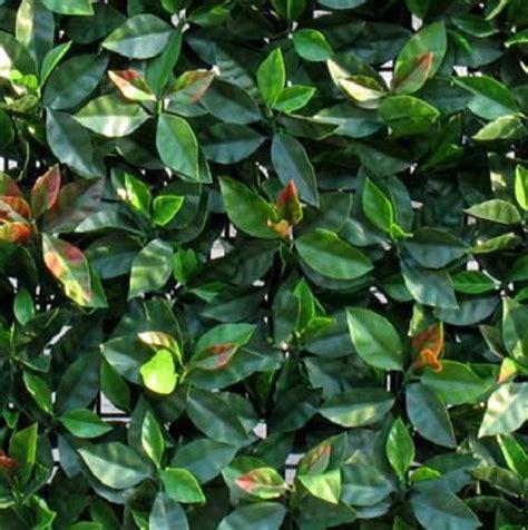 siepi artificiali da giardino prato sintetico erba sintetica siepi artificiali prezzo