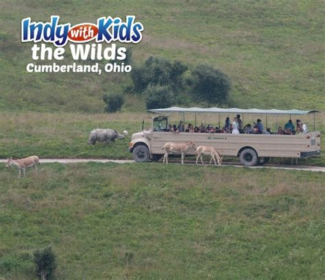 the wilds safari adventure in cumberland ohio