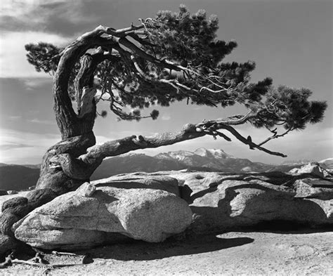 Landscape Photography Masters Ansel The Master Of The Monochrome Landscape
