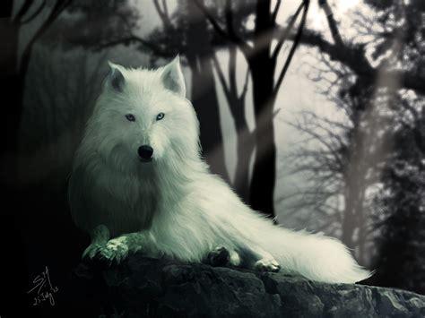 dire wolf ghost direwolf www imgkid the image kid has it