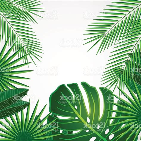 best free vector best free palm leaves png vector image 187 clip designs
