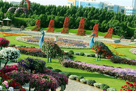 World Largest Flower Garden World S Largest Flower Garden 2