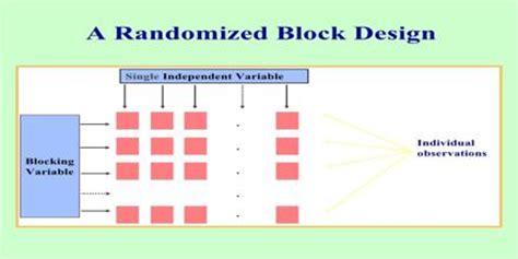 block design experiment definition randomized block design assignment point