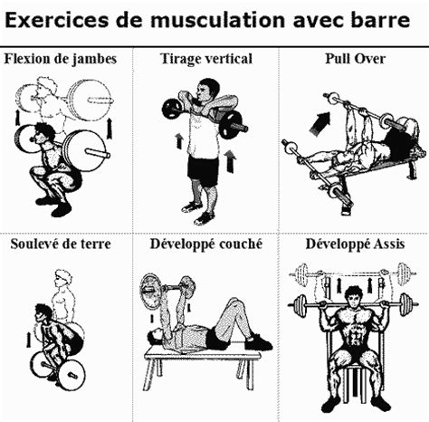 Exercice Musculation Banc by Exercice Musculation Muscu Maison