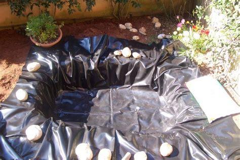 laghetto da giardino per tartarughe come costruire un laghetto artificiale per tartarughe