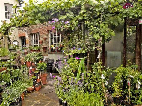 londons  garden centres  plant shops amazing