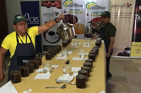 coffee cupping table cupping table daily coffee news by roast magazine