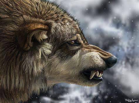 wolf portrait 2009 digital art by katrine hagmann