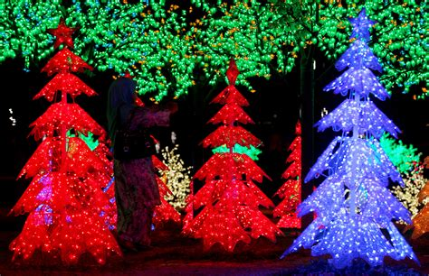 neighborhoods with the top holiday lights in south florida