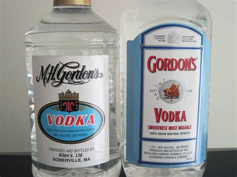 the bottom shelf m h gordon s vodka vs gordon