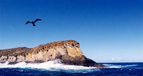 kauai boat tours in december 34 best images about niihau on pinterest language