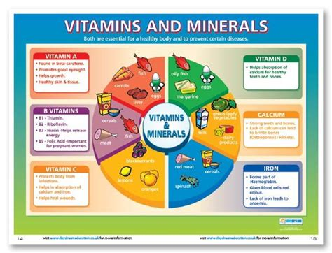 Best Vitamins And Minerals For Detox by Vitamins And Minerals Are An Essential Part Of A Healthy