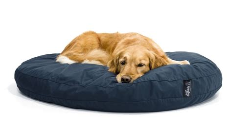no chew dog bed no chew bed 28 images orthopedic tuff bed chew proof