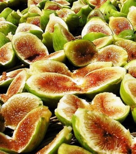 cucinare l anatra selvatica ricetta m 224 sorin coi fighi filetti d anatra selvatica con