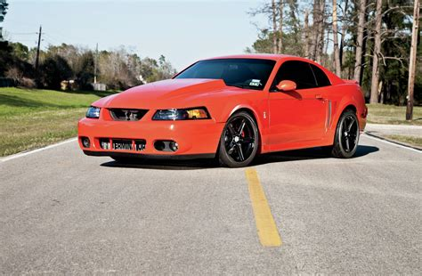 mustang 2004 cobra 2004 ford mustang cobra the one that got away photo