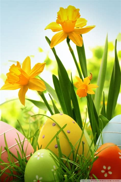17 best ideas about easter religious on pinterest 17 best images about easter backgrounds pictures wallpaper