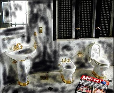saddam hussein bathroom random perspective saddam hussein s bombed bathroom