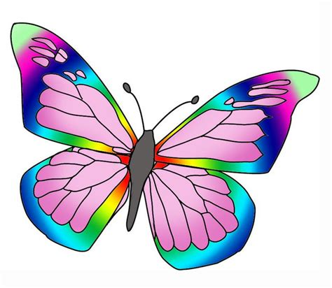 butterfly colors rainbow colore butterfly clipart clipart best