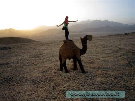 tenda beduina la motorata nel deserto a sharm el sheikh