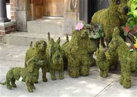 animal topiaries for sale image gallery topiary frames