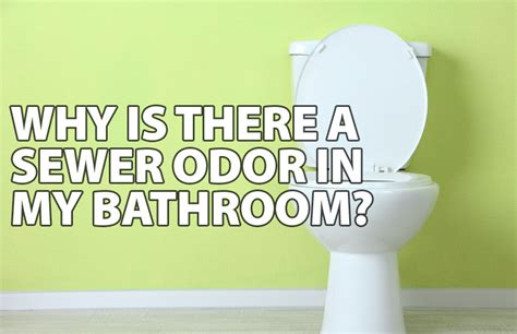 odor in bathroom why is there a sewer odor in my bathroom ben franklin
