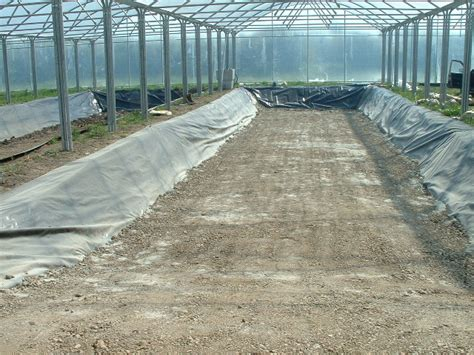 cost farm pond construction image search results