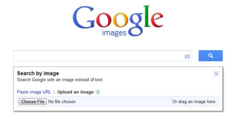 powered  google reverse image search