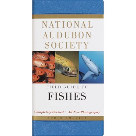 fishes national audubon society field guide field guide