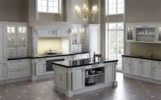 Kitchen Design Ideas White Cabinets by White Kitchen Cabinets Design Kitchen Design Best