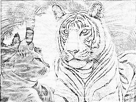 Dessin A Imprimer Tigre A Dent De Sabre