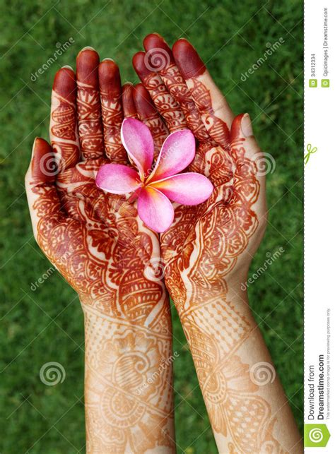 plumeria flower in henna hands stock images image 34312334