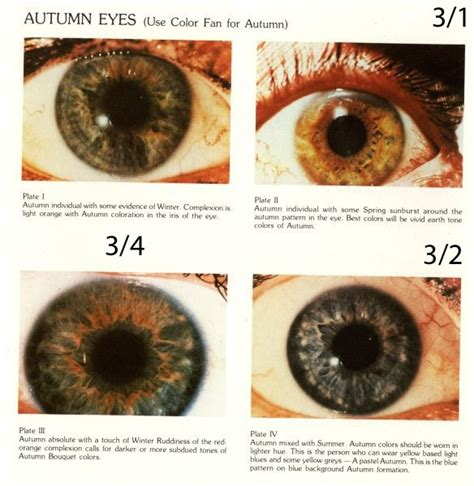 eye pattern analysis ppt expressing your truth blog eye types color analysis