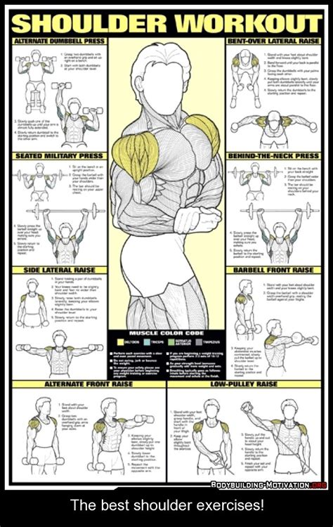 the best shoulder exercises ejercicio exercises and shoulder