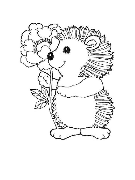 hedgehog coloring pages download and print hedgehog