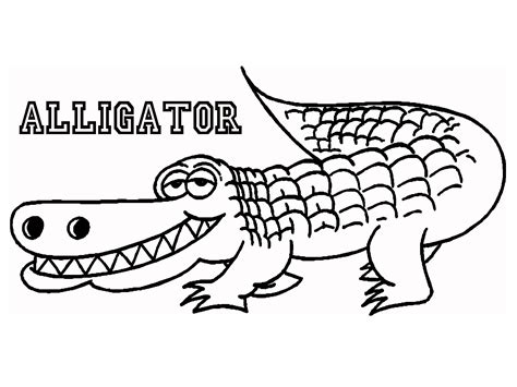 Free Coloring Pages Of Alligator And Crocodile Alligator Coloring Pages