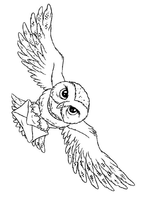 arts and letters hedwig harry potter s owl coloring page harry potter 1082