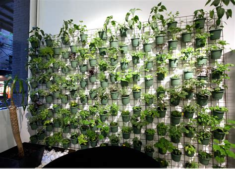 savvy housekeeping 187 vertical garden in pot form