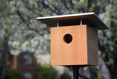 Ez Home Design Inc 5 Totally Awesome Stylish Modern Birdhouses