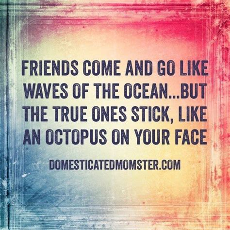 quotes about friendship funny quotes about friends domesticated momster