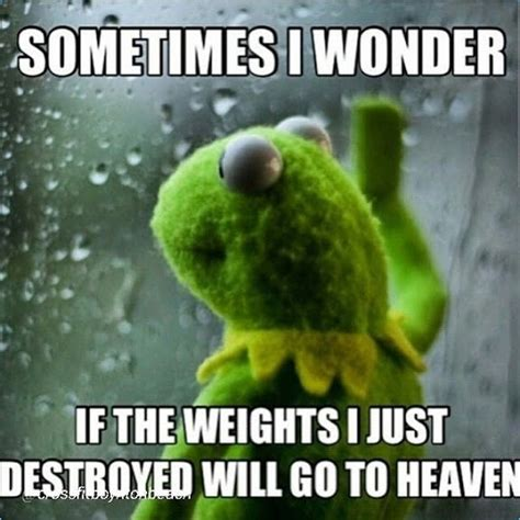 Funny Lifting Memes - 1000 ideas about powerlifting on pinterest powerlifting