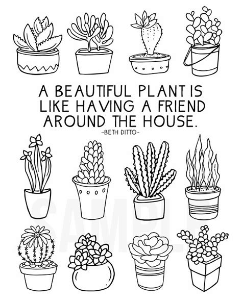 Cute Succulent Planters by Coloring Sheet For Plant Lovers Live Laugh Rowe