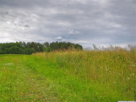june 2007 latvia 5 landscape 3