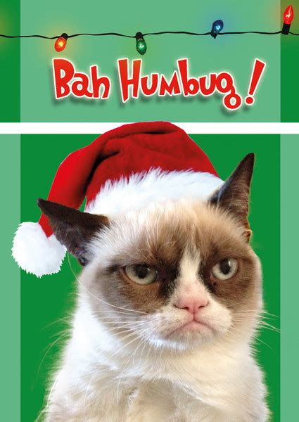 Bah Humbug Meme - miss cellania the instant cat meme grumpy cat